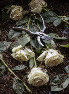 En hög med rosor och verktyg
