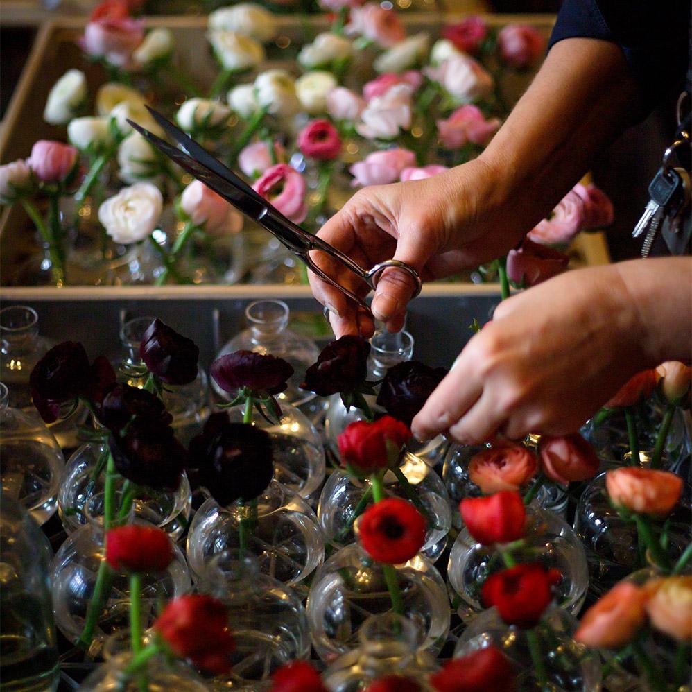 ranunkel i små vaser av glas
