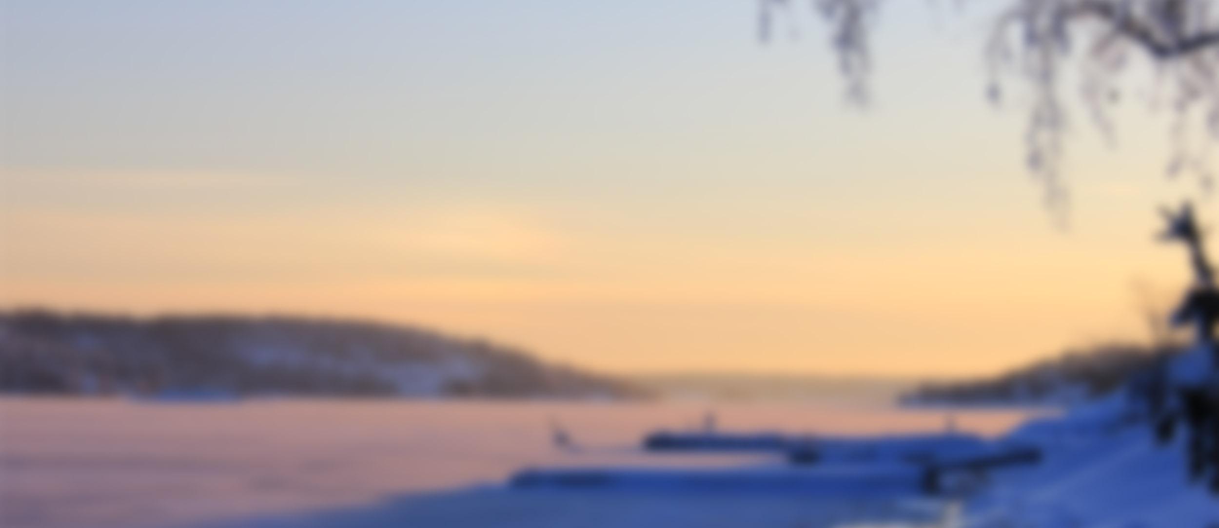 vinterlandskap över havet