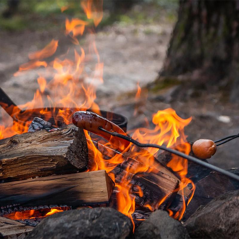 grilla korv över öppen eld i skogen