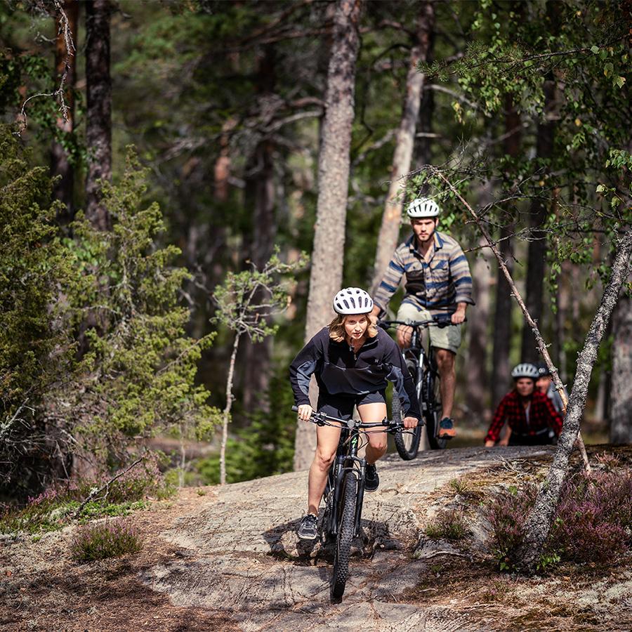 grupp som cyklar i skogen