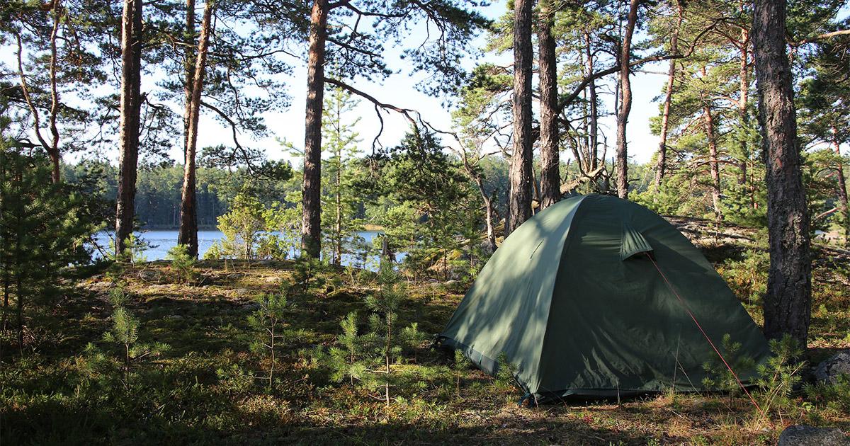 grönt tält i skogen med sjöglimt